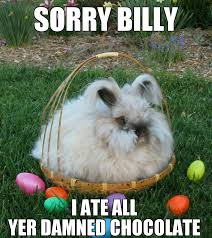 Chocolate Bunny Meme - bastard easter bunny memes