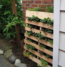 Diy Vertical Pallet Garden - diy herb garden made of pallets 101 pallets