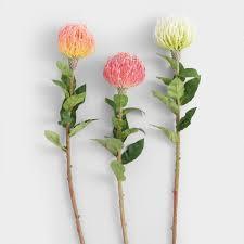 stem flowers faux pincushion protea flower stems set of 3 world market