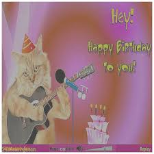 template free birthday ecards singing cats with free template free birthday ecards singing cats with free singing