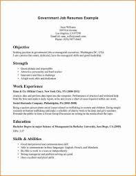 good job resume hitecauto us