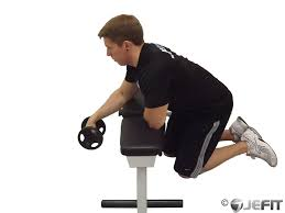 Bench Bicep Curls Dumbbell One Arm Reverse Wrist Curl Over Bench Exercise Database