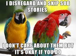 Parrot Meme - unpopular opinion parrot album on imgur