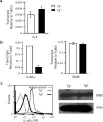 responsiveness of naive cd4 t cells to polarizing cytokine