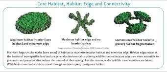 native plants for wildlife habitat and conservation landscaping green growth toolbox habitat conservation recommendations