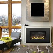 Vent Free Lp Gas Fireplace by Amazon Com Napoleon Whvf31p Vent Free Plazmafire Wall Hanging