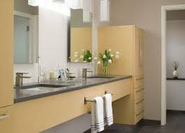 Grey Yellow Bathroom Accessories Best Yellow Minimalist Bathrooms Ideas Only On And Blue Bathroom