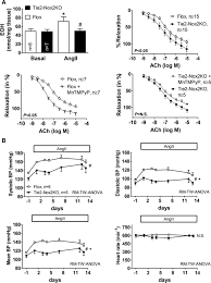 distinct regulatory effects of myeloid cell and endothelial cell