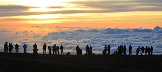 206 tours reviews haleakala tour review guide