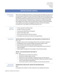 best professional summary resume for restaurant server free