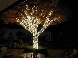 Solar Umbrella Lights by Patio Ideas Outdoor Solar String Lights For Trees Lights For