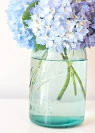 How To Revive Flowers In A Vase Tip To Keeping Cut Hydrangeas Looking Fresh Love Of Family