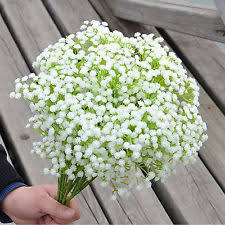 silk baby s breath babys breath home garden ebay