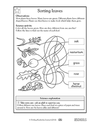 free printable kindergarten science worksheets word lists and