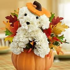thanksgiving flowers flower essence easton florist serving