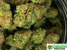 fill up and submit oregon medical marijuana application form to