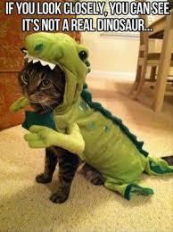 Funny Dinosaur Meme - prehistoric kingdom forum 盪 view topic funny dinosaur pictures