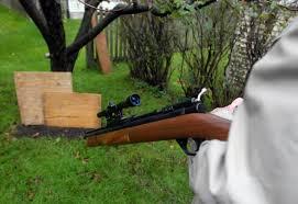 man cited after shooting skunk mysuburbanlife com