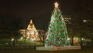 boston common tree lighting ceremony 12 04 14
