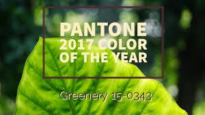 pantone color of the year 2017 pantone 2017 color of the year redesign right llc