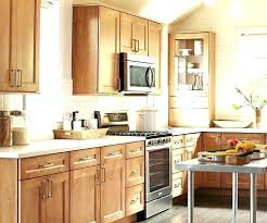 Replacement Doors For Kitchen Cabinets Home Depot Kitchen Door Kitchen Cabinet Doors Replacement Kitchen