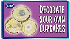 Decorate Your Own Cupcake Cupcake Decorating Youtube