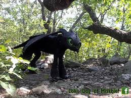 Toothless Costume 25 Cosplaying Pets Who Are So Ready For Halloween 2015 Dorkly Post