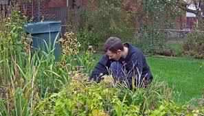how to use preen before planting a vegetable garden garden guides