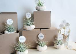 plant wedding favors favors robincharlotte
