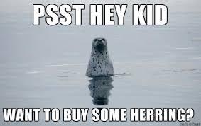 where to buy swedish fish swedish fish meme on imgur