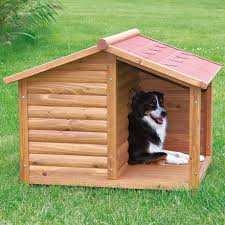 High Dog Houses Dog Houses Noten Animals To Smashing Extra