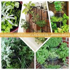 10 small space container and herb garden ideas curbly