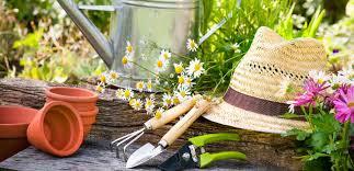 Summer Gardening - summer gardening espares