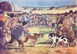 belgian shepherd vs pitbull fight dog fighting wikipedia