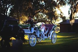 Light Up Ocala Add A Horse Drawn Carriage Ride To Your Event Today Horse