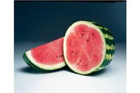 Crimson Sweet Watermelon Seed Johnny U0027s Selected Seeds