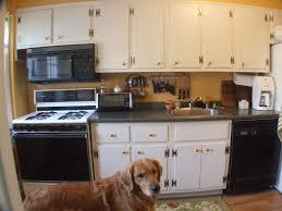 Amish Built Kitchen Cabinets by 100 Amish Kitchen Islands 100 Kitchen Islands Oak 100