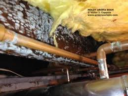 Damp Basement Smell by Odor Investigation Services Monmouth County Greenworks