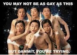 Funny Gay Memes - gay meme funny gay happy birthday memes