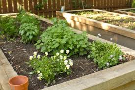 how to build raised garden beds simple bites