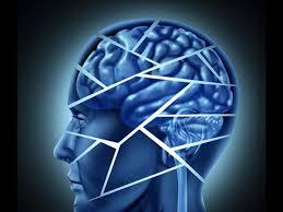ultramind solution book fix your broken brain by healing broken brain the summer local