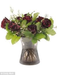 How Much Does A Dozen Roses Cost How Long Will Your Valentine U0027s Roses Last We Put Eight Bouquets