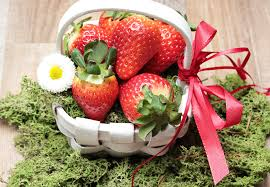 fruits and blooms basket free images blossom plant fruit bloom moss meal food