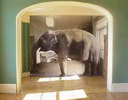 elephant living room kenya democracy project the elephant in the kibaki s living room