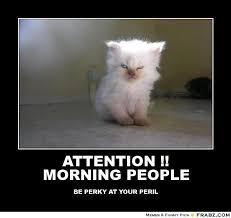 Meme Generator Google - attention morning people evil kitteh meme generator