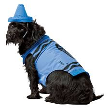 small dog witch costume crayola screamin u0027 green crayon dog costume costume craze