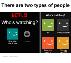 Meme Types - there are two types of people netflix who s watching who s