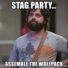 Stag Party Meme - stag party assemble the wolfpack alan hangover meme generator