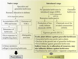 native plants of china exotic plant invasion in the context of plant defense against