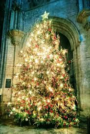 ely woman captures beauty of cathedral u0027s christmas tree whilst
